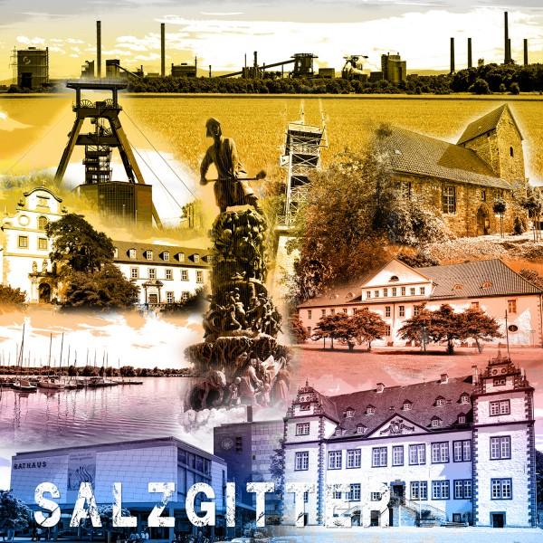 Stadtcollage Salzgitter 50x50